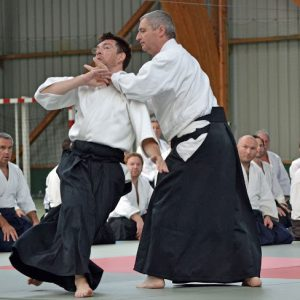 Aikido à Penvénan en 2011
